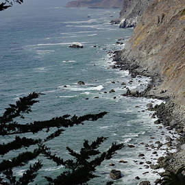 Coastal View on North Highway 1 by Debby Pueschel