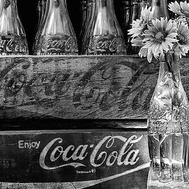 Coke And Gaillardia Still Life Life Black And White by JC Findley