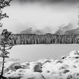 Cold As Ice by Eric Glaser