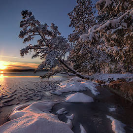 Cold Creek Winter Sunset by Ron Wiltse
