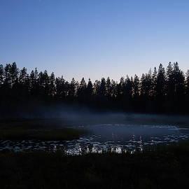 Cold night coming by Jouko Lehto
