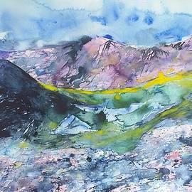 Coulin Forest, Highlands by Robert Hogg