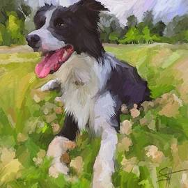Collie Flowers by Scott Waters