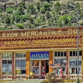 Colorado Mercantile Historical Building by Janice Pariza