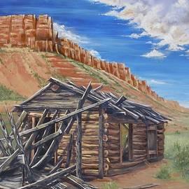 Colorado Prarie Cabin by Alan Johnson