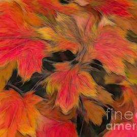 Colorful Autumn Maple Leaves Abstract Flux Effect
