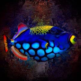 Colorful Clown Triggerfish Portrait by Scott Wallace Digital Designs