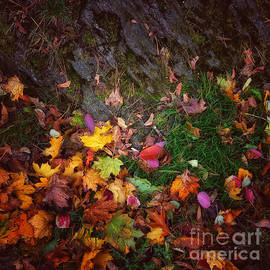 Colorful Quilt of Autumn Leaves by Miriam Danar