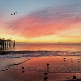 Colors Of Dawn by Robert Banach