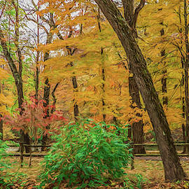 Colors Of The Day by Kevin Lane