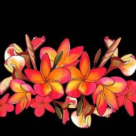 Coloured Frangipani Black Bkgd by Joan Stratton