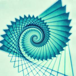 Composition de Nautile by Jon Woodhams