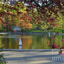 Conservatory Water - Central Park New York by Miriam Danar