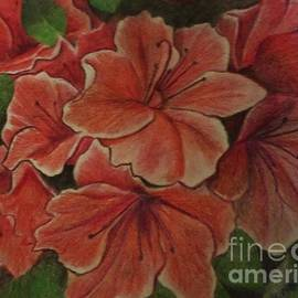 Coral Floral Hibiscus by Christy Saunders Church