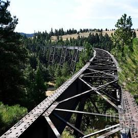Corbin Railroad Trestle by Steve Brown