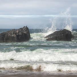Cormorant Rock 01065 by Kristina Rinell