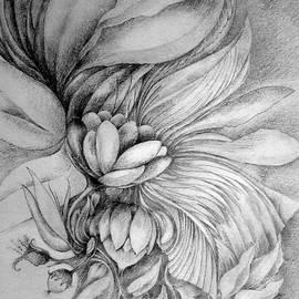 Cornucopia by Rosanne Licciardi