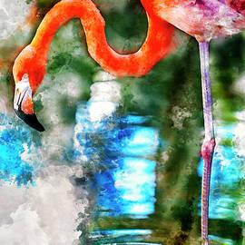 Costa Maya Flamingo by David Smith
