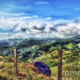 Arnie Goldstein - Costa Rican Hills