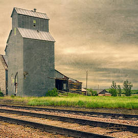 Cottonwood South Dakota Grain Elevator II by Joan Carroll
