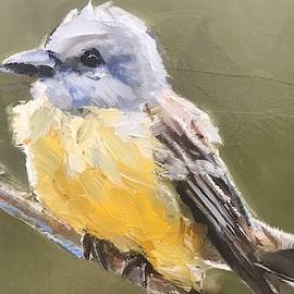 Couch's Flycatcher by Gary Bruton