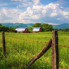 Country Life by Debra and Dave Vanderlaan