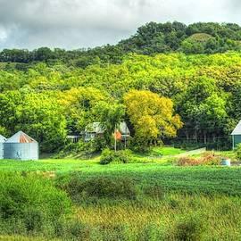 Country Life by Debra Kewley