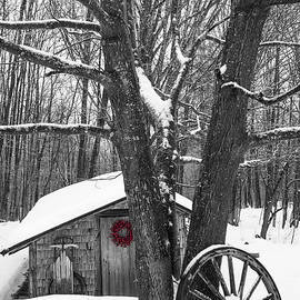 Alana Ranney - County Winter