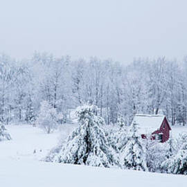 Alana Ranney - County Winter Scene