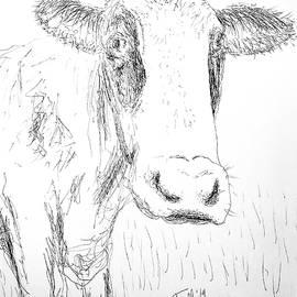 Cow Doodle by Monique Faella