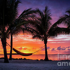 Cradling the Sun at Happy Hour by Rene Triay Photography