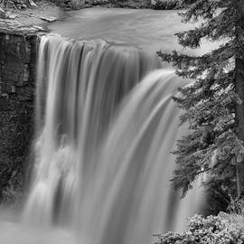 Crescent Falls Wooded Portrait Black And White by Adam Jewell