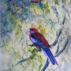 Crimson Rosella by Ryn Shell