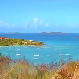 Cruz Bay Panorama by Lorraine Baum