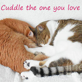 Cuddle the One You Love by Cheryle Gannaway