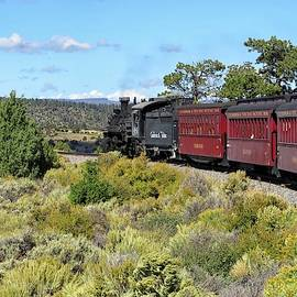 Cumbres and Toltec by Connor Beekman
