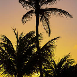 Curacao Sunset by Adam Romanowicz