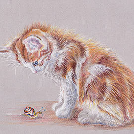 Curiosity and the fluffy kitten by Debra Hall