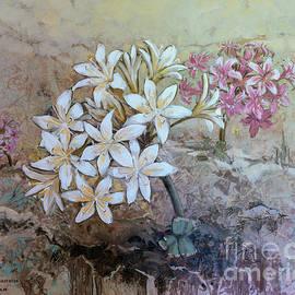 Cybistetes Longifolia by Rudi Venter