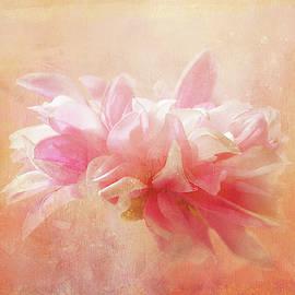 Dahlia Sparkle by Terry Davis