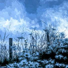 Daisy Blues by Jim Love