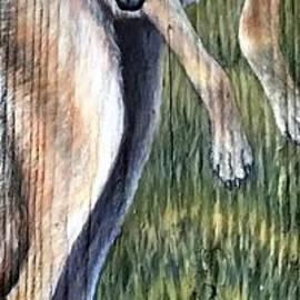 Dances With Coyote by Joey Nash