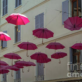 Dancing Umbrellas by Michelle Meenawong