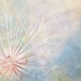 Dandelion Whimsy by Terry Davis