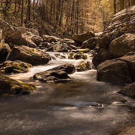 Daniel Creek At Cloudland Canyon State Park 2 by Keith Smith