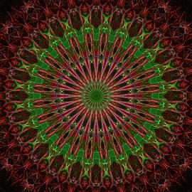 Dark Red And Green Mandala by Jaroslaw Blaminsky