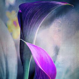 Dark Textured Lilies by Terry Davis