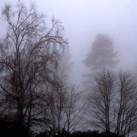 Darker Foggy Day by Clive Beake