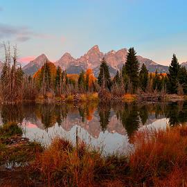 Dawn Along The Pond by Michael Morse