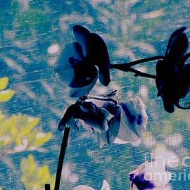 Death Life Orchid Painterly by Kasha Baxter